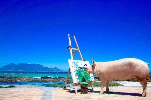 نقاشی کردن خوک