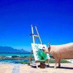"""""""پیگکاسو """" خوک ۲۴۰ کیلویی که نقاشی می کند!"""