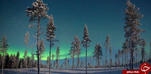 شفق های قطبی