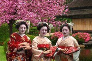 فستیوال شگفت انگیز شکوفه های گیلاس در کشور ژاپن!