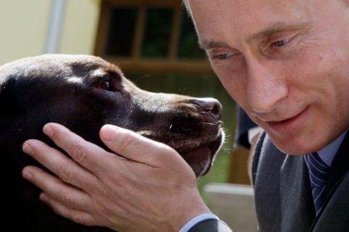 بستنی مورد علاقه ولادیمیر پوتین
