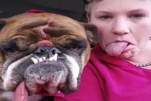 مسابقه بین المللی انتخاب زشت ترین سگ های دنیا