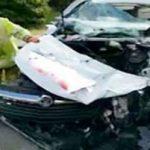 نجات سگ بعد از تصادفی شدید میان سه خودرو!
