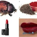 تولید رنگ خوراکی عجیب با حشره برای لوازم آرایش و نوشیدنی های قرمز |واقعا E12 چیست؟