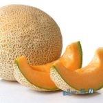 همه چیز درباره تراریخته بودن ملون | آیا این میوه خوشمزه سرطان زاست؟