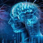تغییرات مغز مردان در طول عمرشان