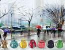 از روی رنگ بارانی افراد شخصیتشان را بشناسید!
