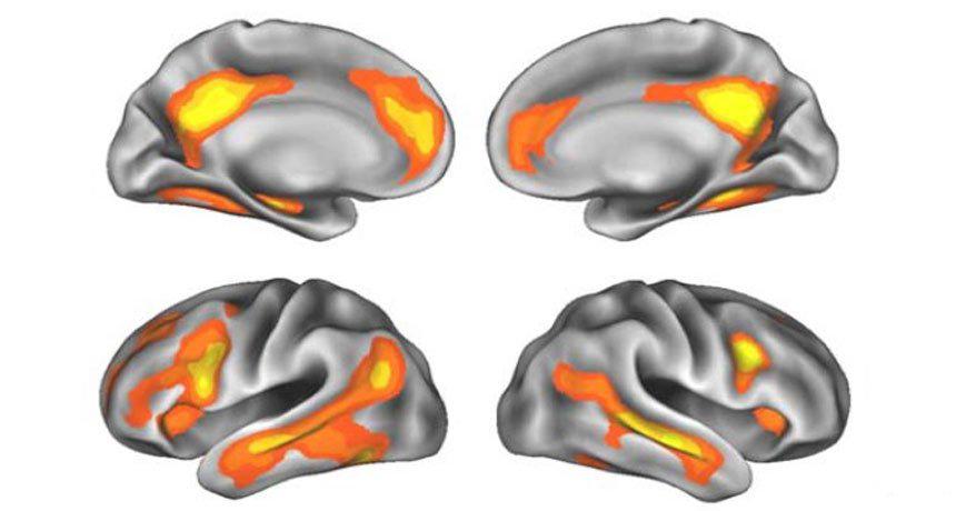 عوامل تاثیرگذار بر مغز زنان ، تاثیرات جالب بارداری بر مغز زنان