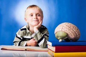 غذاهایی برای افزایش هوش کودکان