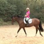 تاثیر اسب سواری بر کودک