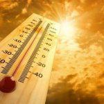 تشدید عوارض بارداری با افزایش دما