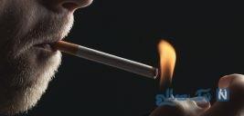 شیوع مصرف دخانیات در مردان بیش از زنان