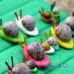 ساخت کاردستی حلزون با خمیر بازی + تصاویر