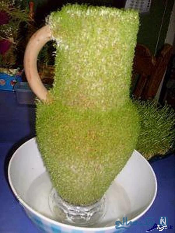 کاشت سبزه به شکل کوزه