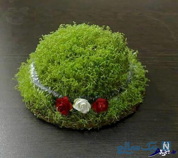 سبزه به شکل کلاه