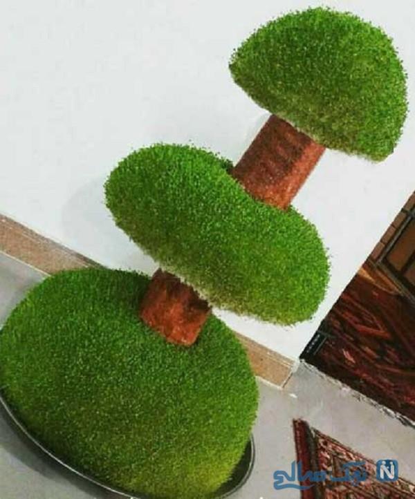 سبزه به شکل درخت