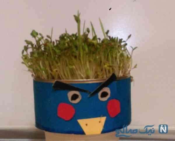 سبزه با وسایل دورریختنی