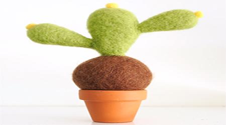 گلدان کاکتوس زیبا و جالب با وسایل بسیار ساده بسازید+تصاویر