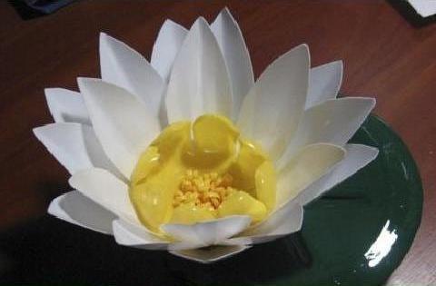 گل نیلوفر آبی بسیار زیبا با وسایل دورریختنی بسازید تصاویر