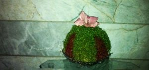 آموزش کاشت سبزه دو رنگ عید ایده ای زیبا و جالب + تصاویر
