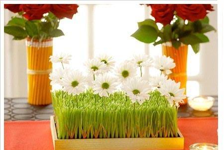 آموزش ساخت سبزه به شکل جا شمعی یا گلدون