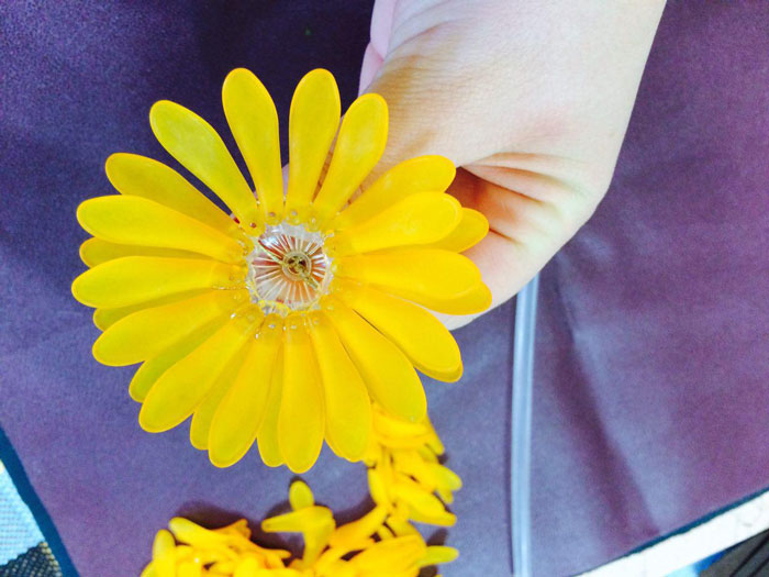 آموزش ساخت گل داوودی