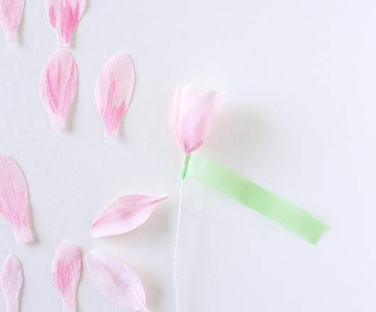 آموزش شکوفه کاغذی