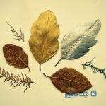 آموزش ساخت برگ تزئینی اکلیلی و خشک