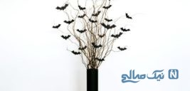 نحوه ساخت گلدان پر از خفاش