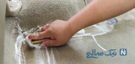 نحوه صحیح استفاده از شامپو فرش
