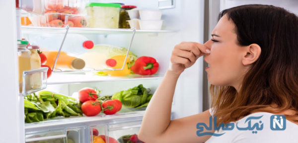از بین رفتن بوی بد یخچال