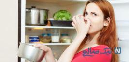 از بین رفتن بوی بد یخچال به صورت فوری