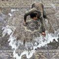 رعایت ۷ نکته کلیدی در شستشوی فرشها !