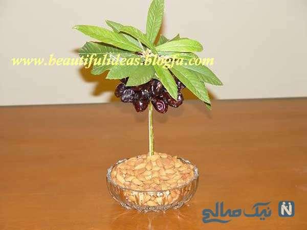 آموزش تصویری میوه آرایی بصورت درخت خرما