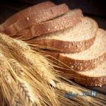 روش های جلوگیری از کپک زدن نان ها