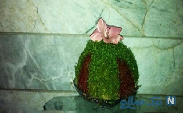 آموزش درست کردن سبزه ی عید دو رنگ +تصاویر