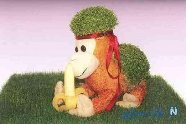 مدل سبزه میمون ۹۵ +تصاویر