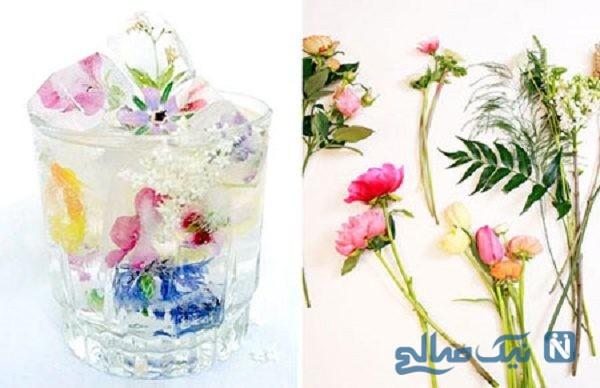 تزیین یخ با گل و میو