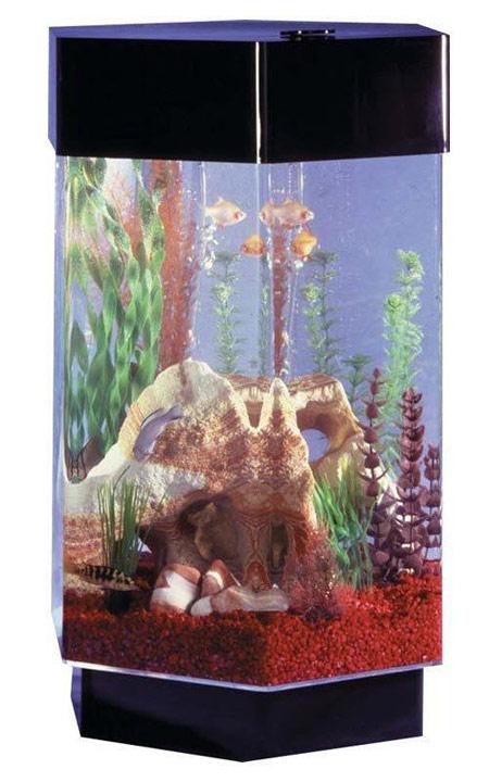 تزئین تنگ ماهی نوروز ۹۳ + تصاویر