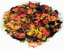 روشی جدید و سریع خشک کردن گل با مایکروویو