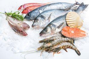 ماهی منجمد بخریم یا خودمان ماهی را در خانه منجمد کنیم؟