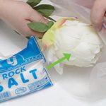 مراحل مختلف تمیز کردن گل های مصنوعی با مواد طبیعی