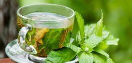 مصرف چای سبز در بارداری چه عوارضی دارد؟