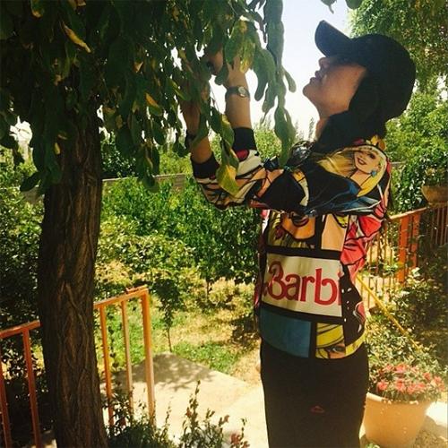 بهاره افشار در حال چیدن میوه تابستانی + عکس