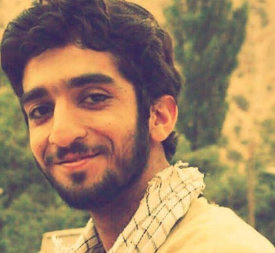شهادت محسن حججی