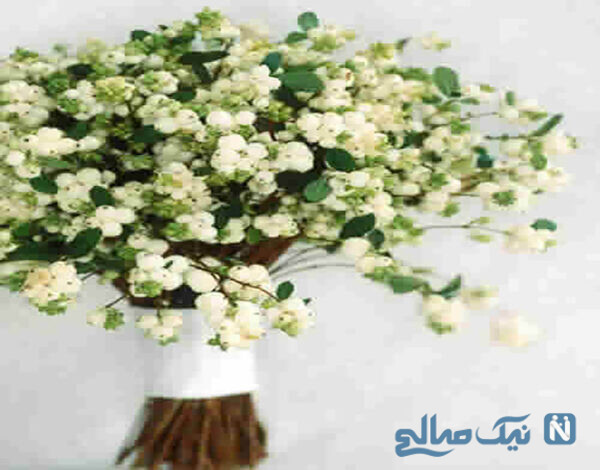 گل عروس مدل جدید