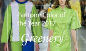 موسسه پینتون رنگ سال 2017