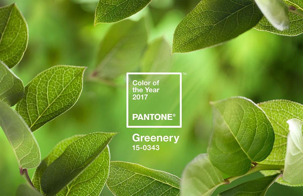 رنگ سال ۲۰۱۷ را بشناسید/ ترکیب رنگ ها برای سال۲۰۱۷+تصاویر