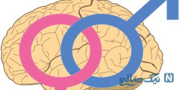 تفاوت کارکرد مغز زن و مرد
