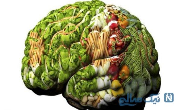 ۱۱ ماده غذایی برای تقویت حافظه